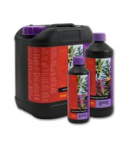 B'cuzz Coco Bloom Stimulator 1L